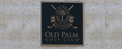 Old Palm